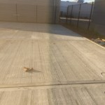 Concrete Flooring Contractors, External Paving, Agricultural Flooring